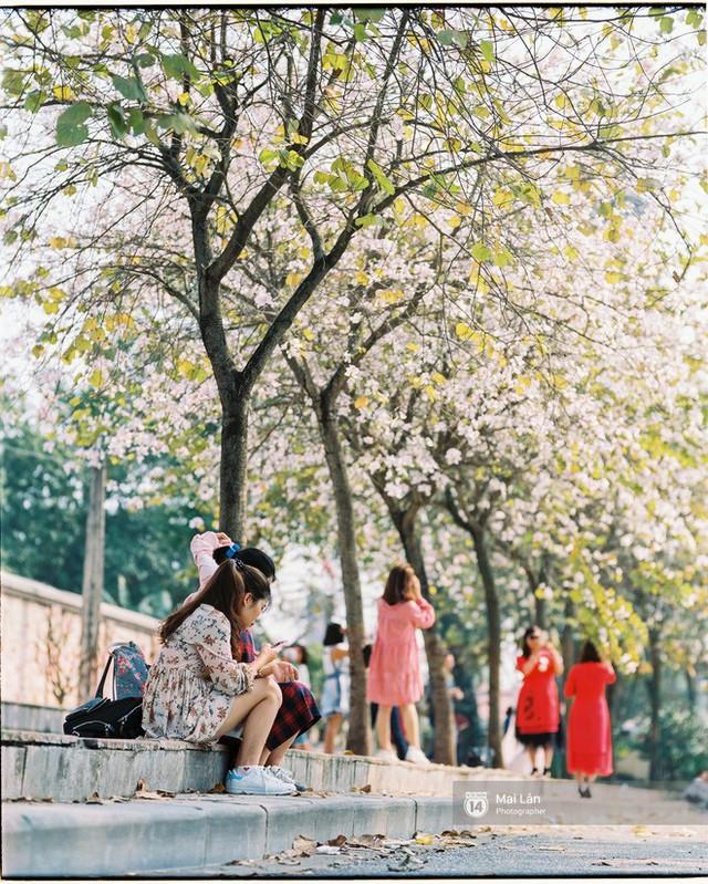 Chùm ảnh: Đây là Hà Nội, của những ngày trắng muốt hoa sưa... - Ảnh 15.