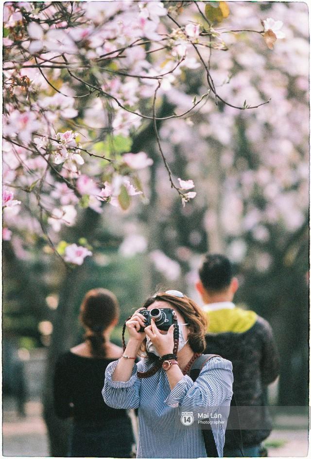 Chùm ảnh: Đây là Hà Nội, của những ngày trắng muốt hoa sưa... - Ảnh 18.