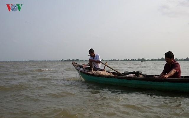 Kiếm hàng chục triệu nhờ săn cá bông lau sông Hậu - Ảnh 2.