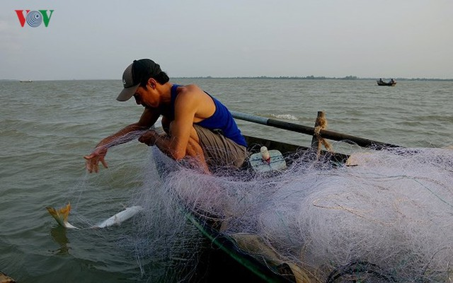 Kiếm hàng chục triệu nhờ săn cá bông lau sông Hậu - Ảnh 7.