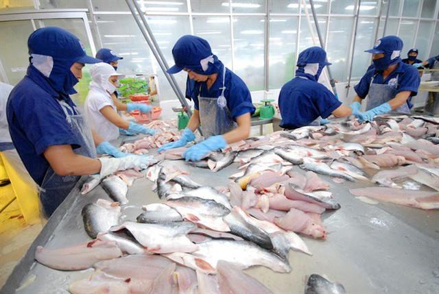 Đưa xuất khẩu cá tra đạt 2 tỷ USD - Ảnh 1.