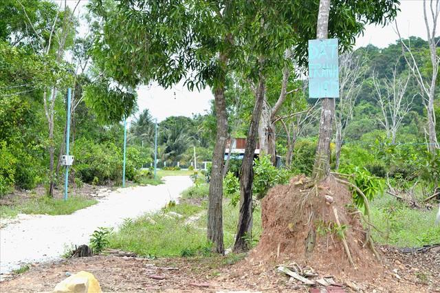 Chùm ảnh: Muôn kiểu rao phân phối ở chợ đất khổng lồ Phú Quốc - Ảnh 12.