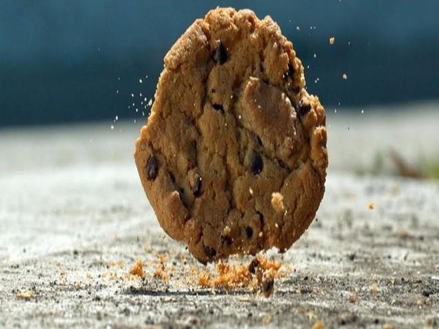 Sự thật về 'quy tắc 5s' của đồ ăn rơi xuống đất? - Ảnh 1.