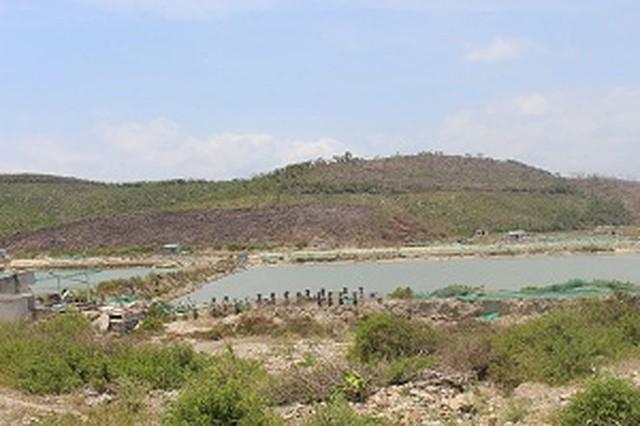 Ngăn sốt đất đặc khu kinh tế Vân Phong - Ảnh 1.