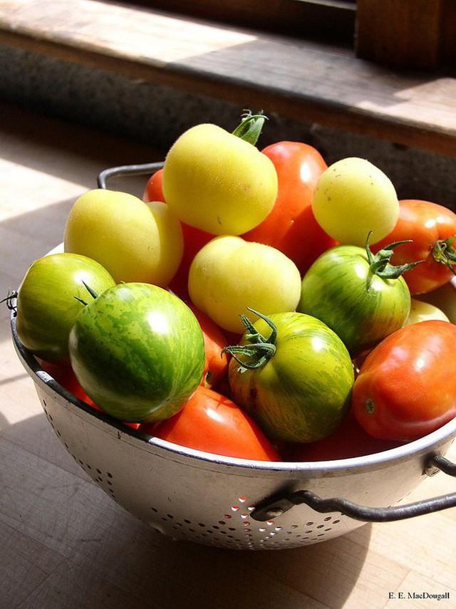 7 loại rau quả mùa hè phòng chống ung thư - Ảnh 1.