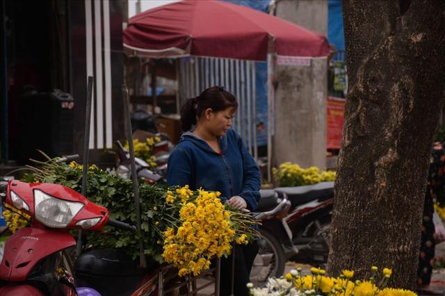 Nông dân Tây Tựu ngao ngán: Hoa cúc được mùa nhưng mất giá - Ảnh 11.