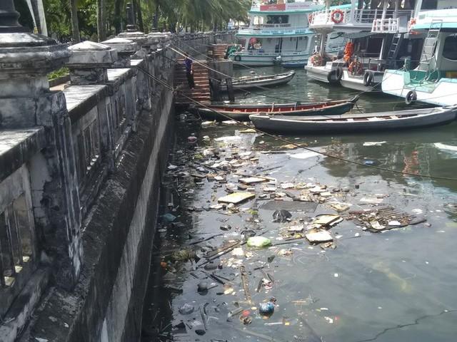 """Ớn lạnh với """"núi rác"""" ở đảo ngọc Phú Quốc - Ảnh 12."""