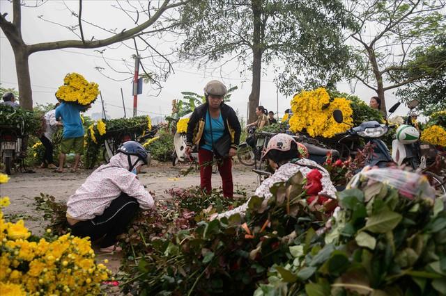 Nông dân Tây Tựu ngao ngán: Hoa cúc được mùa nhưng mất giá - Ảnh 6.