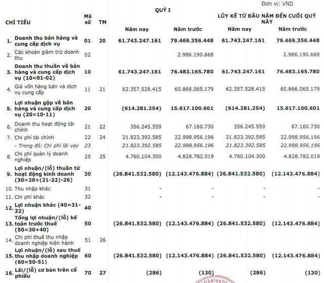 Sau Thủy điện miền Trung, đến lượt Thủy điện miền Nam (SHP) báo lỗ 27 tỷ đồng quý 1 - Ảnh 1.