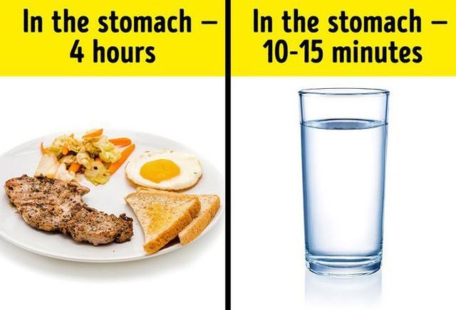 Uống nước trong khi ăn có hại hay không? Câu trả lời khiến nhiều người bất ngờ - Ảnh 2.