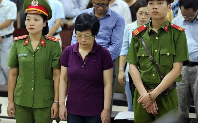 Tình tiết bất ngờ trước phiên tòa phúc thẩm cựu đại biểu Quốc hội Châu Thị Thu Nga - Ảnh 1.