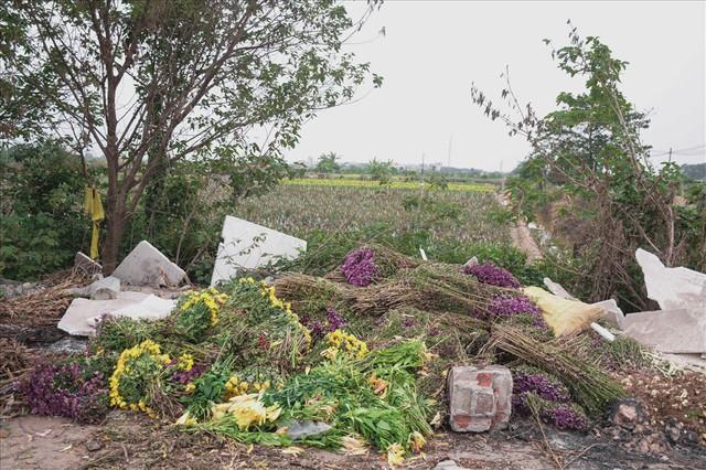 Tây Tựu: Người trồng hoa loa kèn có thực sự trúng lớn? - Ảnh 9.