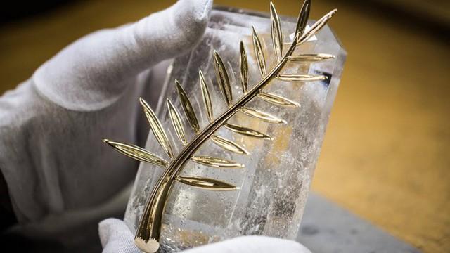 LHP Cannes: Cành cọ có ý nghĩa gì mà lại được chọn làm biểu tượng cho giải thưởng danh giá nhất hành tinh? - Ảnh 3.