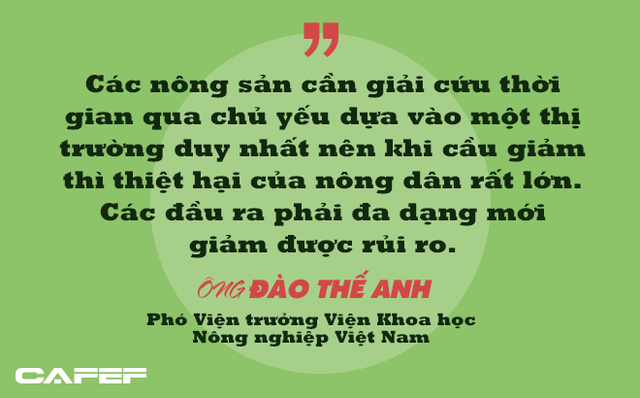 Phó Viện trưởng Viện Khoa học Nông nghiệp Việt Nam: Người thành thị không nên tham gia giải cứu nông sản! - Ảnh 3.