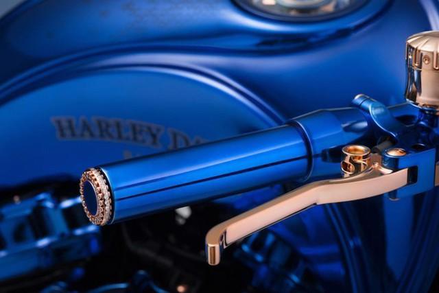 Chiêm ngưỡng chiếc Harley-Davidson được mạ vàng, nạm kim cương có đắt nhất thế giới - Ảnh 3.