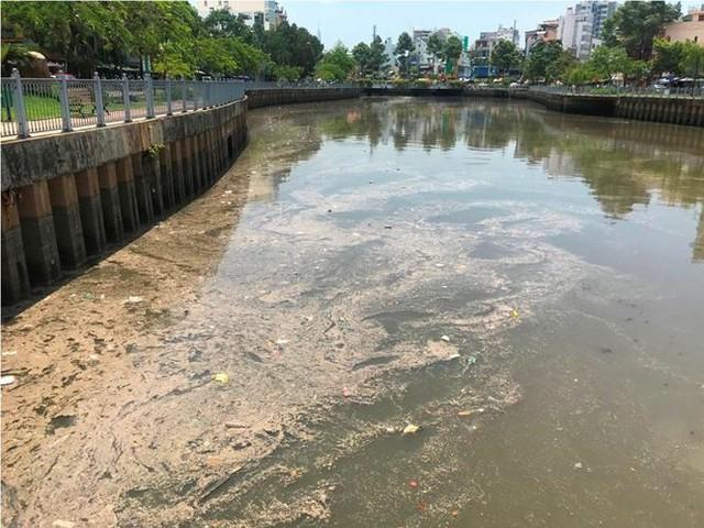 Rác ngập ngụa, cá nổi đầy kênh Nhiêu Lộc sau cơn mưa chuyển mùa  - Ảnh 2.