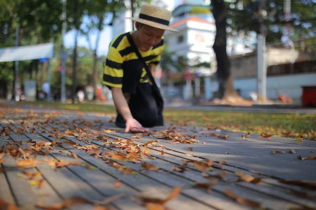 Sài Gòn đẹp mê hồn với mùa chò nâu xoay tít - Ảnh 4.