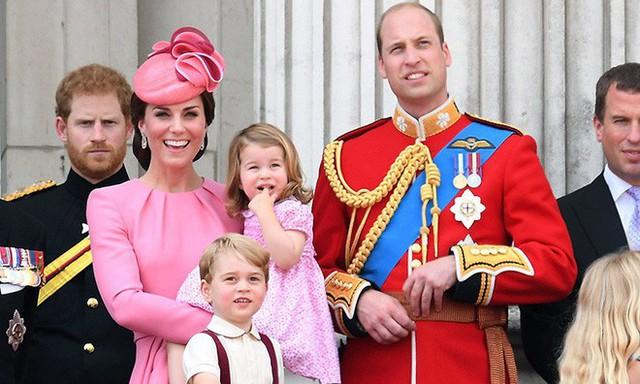 Giấy khai sinh của con trai thứ 3 tiết lộ nghề nghiệp đặc biệt của hoàng tử William và Công nương Kate - Ảnh 9.