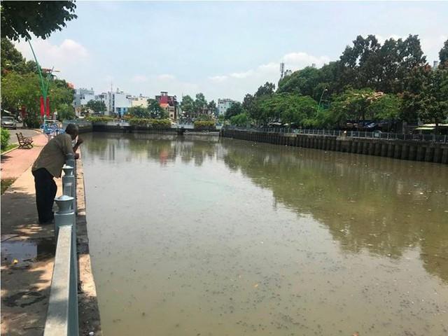 Rác ngập ngụa, cá nổi đầy kênh Nhiêu Lộc sau cơn mưa chuyển mùa  - Ảnh 9.
