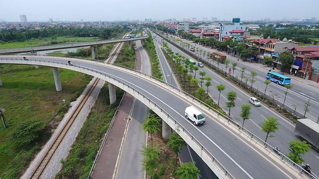 Những hàng cây xanh mướt thẳng tắp ở đầu cầu Thanh Trì - Ảnh 1.