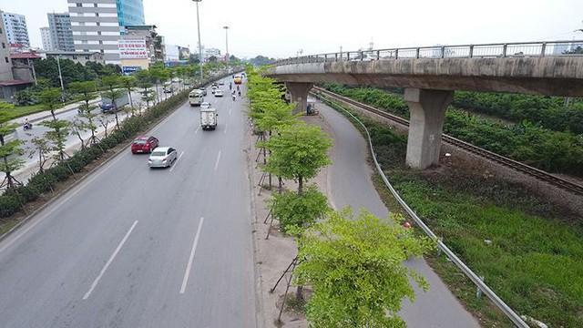 Những hàng cây xanh mướt thẳng tắp ở đầu cầu Thanh Trì - Ảnh 11.