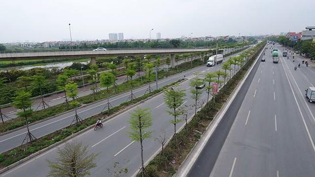 Những hàng cây xanh mướt thẳng tắp ở đầu cầu Thanh Trì - Ảnh 12.