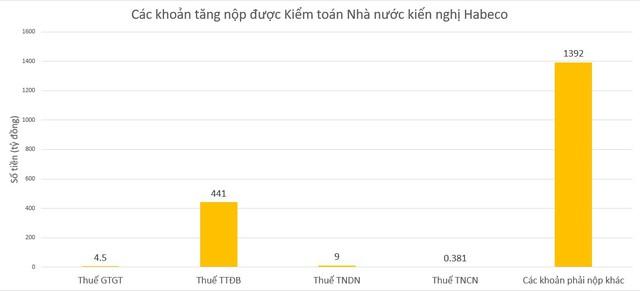 Kiểm toán Nhà nước đề nghị Bia Hà Nội tăng nộp ngân sách 1.847 tỷ đồng - Ảnh 1.