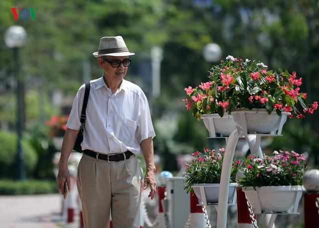 Ảnh: Hà Nội có tuyến phố đi bộ thứ 2 vào ngày 11/5 - Ảnh 11.