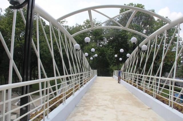 Ngắm cầu bộ hành 11 tỷ ở cửa ngõ sân bay Tân Sơn Nhất - Ảnh 7.