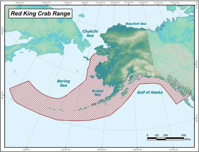 Bắt cua hoàng đế Alaska nguy hiểm chết người nhưng còn 1 việc đáng sợ không kém: quay phim... nghề đánh bắt đó! - Ảnh 4.