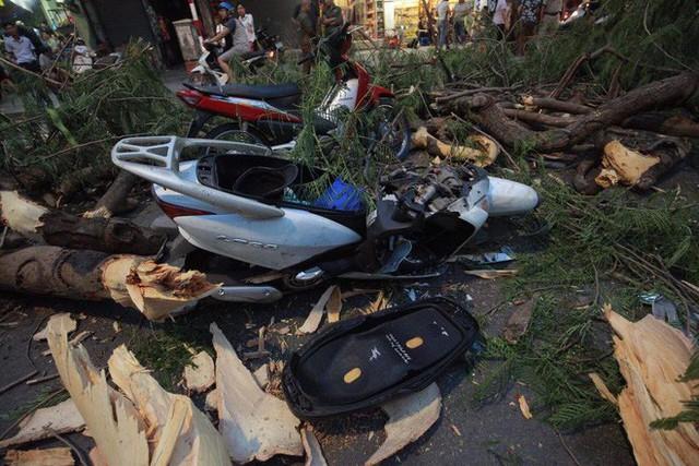 Cây cổ thụ bật gốc đè xe máy trên phố Hà Nội, 5 người bị thương - Ảnh 4.