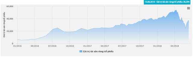 Thị trường gặp khó, Hestia (HSA) giảm 1/3 giá khởi điểm đợt chào bán đấu giá xuống còn 42.000 đồng/cp - Ảnh 1.
