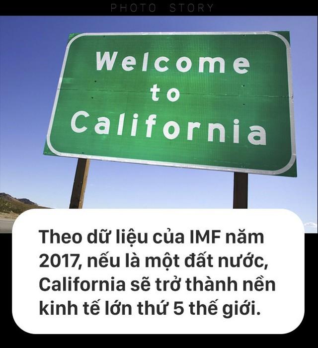 [PHOTO STORY] California với nền kinh tế nghìn tỷ sẽ tách làm 3 sau tháng 11? - Ảnh 2.
