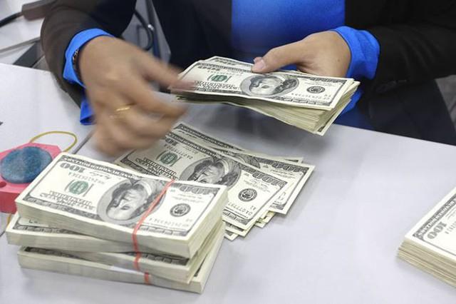 Tỷ giá đô la tăng mạnh, ngân hàng nhà nước: Không đáng ngại   - Ảnh 1.