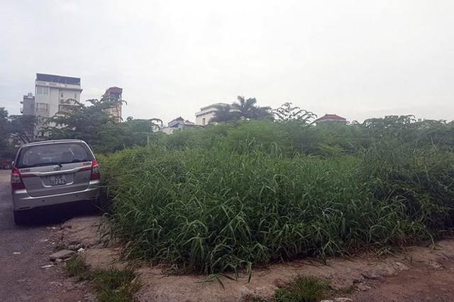 Kiểm tra bãi xe lậu trên khu đất 10.000m2 giữa Thủ đô - Ảnh 6.