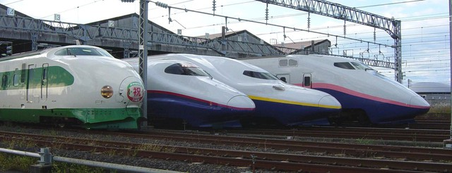 Vì sao ngành đường sắt luôn cần trợ cấp từ Chính phủ? - Ảnh 3.