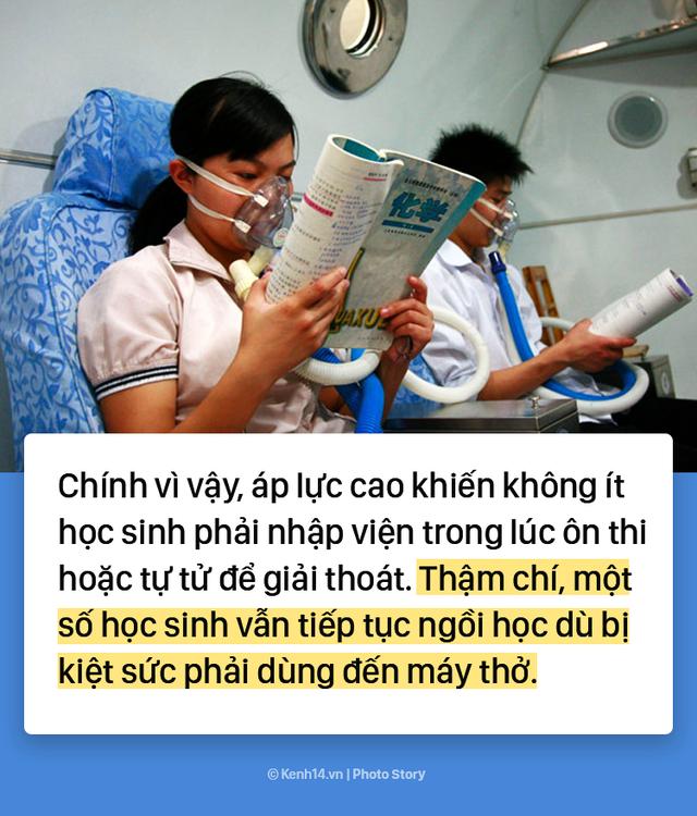 Trung Quốc: 10 triệu thí sinh chọi nhau trong kỳ thi đại học - Ảnh 3.