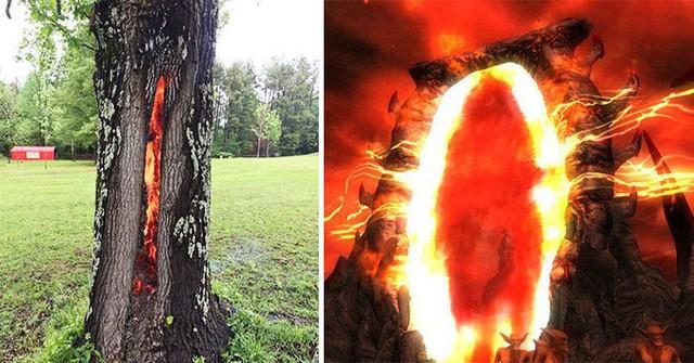 Những bức hình chứng minh khi Mẹ Thiên nhiên lên tiếng - con người sẽ đứng hình thế nào - Ảnh 6.