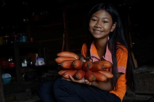 Từ chuyện cơn sốt chuối đỏ siêu lạ 600.000 đồng/kg - Ảnh 3.