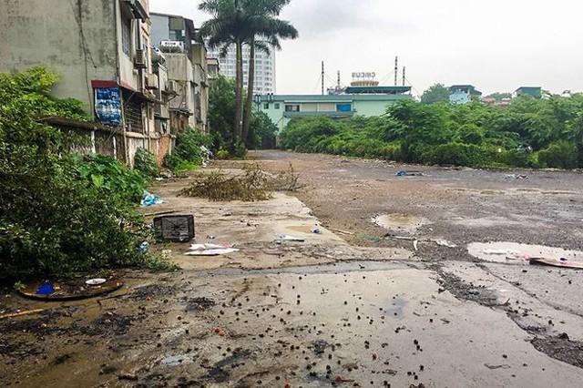 Sau lệnh Chủ tịch Hà Nội, bãi xe lậu 10.000m2 đất vàng bị xóa sổ - Ảnh 1.