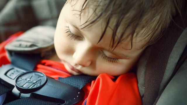 Đậu ô tô ngoài trời nắng: Nguy cơ sốc nhiệt đến tử vong cho trẻ nhỏ - Ảnh 2.