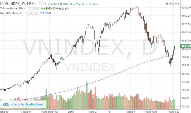Chứng khoán BSC: Các cổ phiếu lớn thay nhau làm trụ, VN-Index sẽ tích lũy trên 1.000 điểm trong tháng 6 - Ảnh 2.