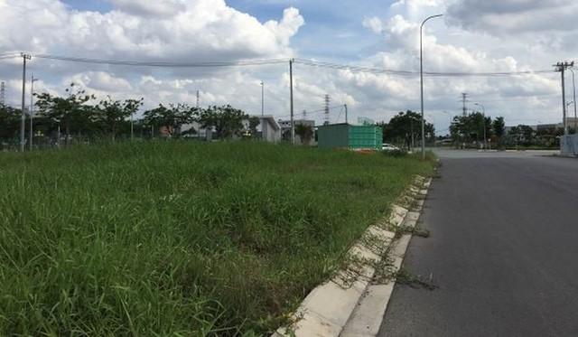 Dự án tỷ USD ven sông Sài Gòn cỏ mọc um tùm - Ảnh 2.