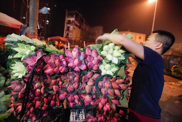 Chùm ảnh: Hoa sen thống lĩnh tại chợ đêm Quảng Bá - Ảnh 1.