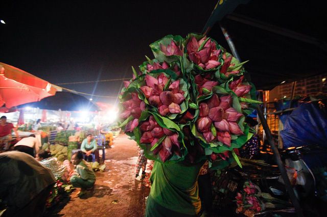 Chùm ảnh: Hoa sen thống lĩnh tại chợ đêm Quảng Bá - Ảnh 3.