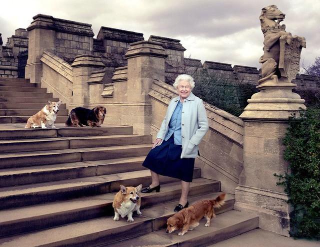 Những điều thú vị được tiết lộ trong mối quan hệ giữa Nữ hoàng Anh với cháu dâu mới Meghan - Ảnh 2.