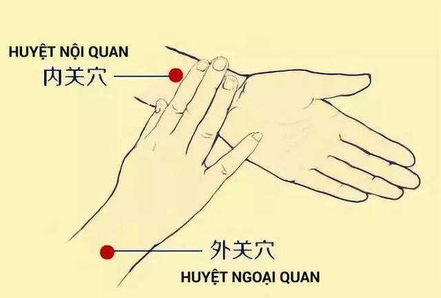 3 huyệt vị giúp phòng chữa bệnh gan nhiễm mỡ: Cách bấm đơn giản, hiệu quả lâu dài - Ảnh 1.