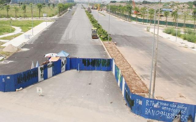 Đường BT nghìn tỷ Hà Nội quây rào để cỏ mọc  - Ảnh 4.