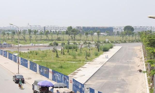 Đường BT nghìn tỷ Hà Nội quây rào để cỏ mọc  - Ảnh 6.