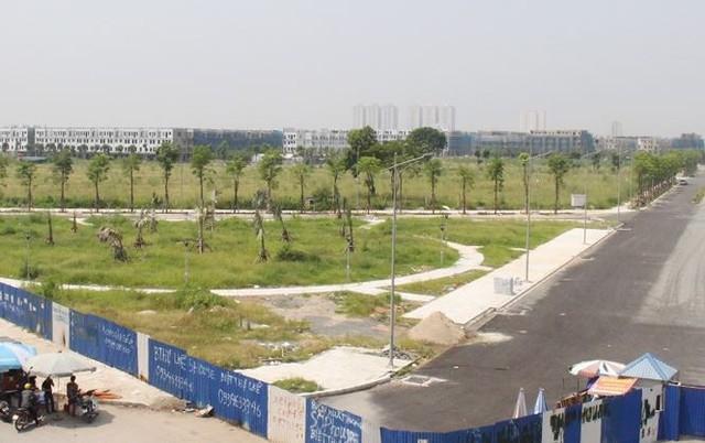 Đường BT nghìn tỷ Hà Nội quây rào để cỏ mọc  - Ảnh 7.
